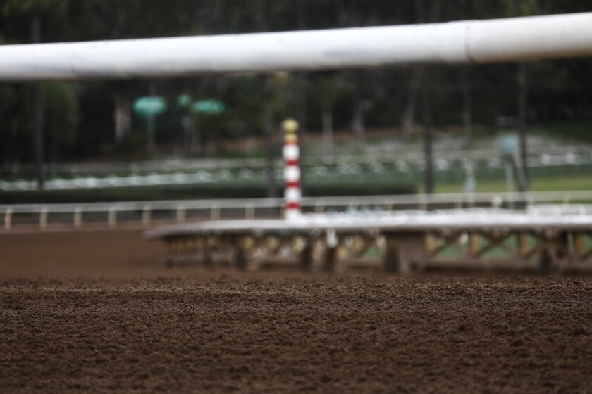 Santa Anita Park Track Cancels Races As Over 20 Horses Have Died There In Under Three Months