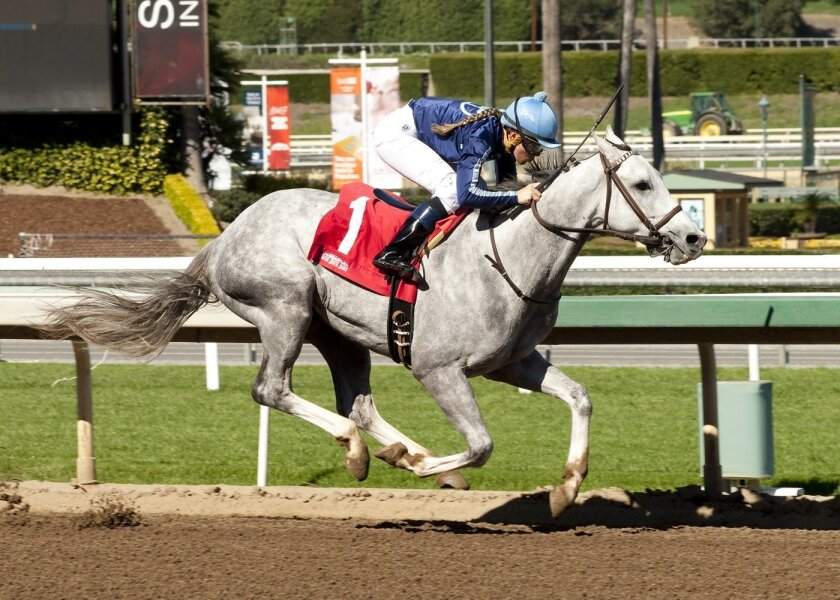 In this image provided by Benoit Photo, apprentice jockey Rosie Higgins on Blue Law competes in a race at Santa Anita Park, Arcadia, Calif., Thursday, Feb. 11, 2016. Higgins rode her first career winner in the second race Thursday at Santa Anita, with Hall of Fame jockey and husband Kent Desormeaux