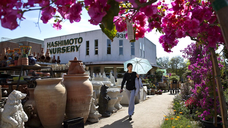 Neighborhood Spotlight   Sawtelle Japantown