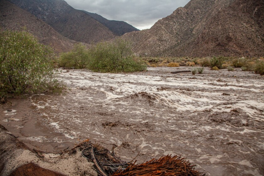 A flash flood in Palm Canyon with water flowing several feet deep.