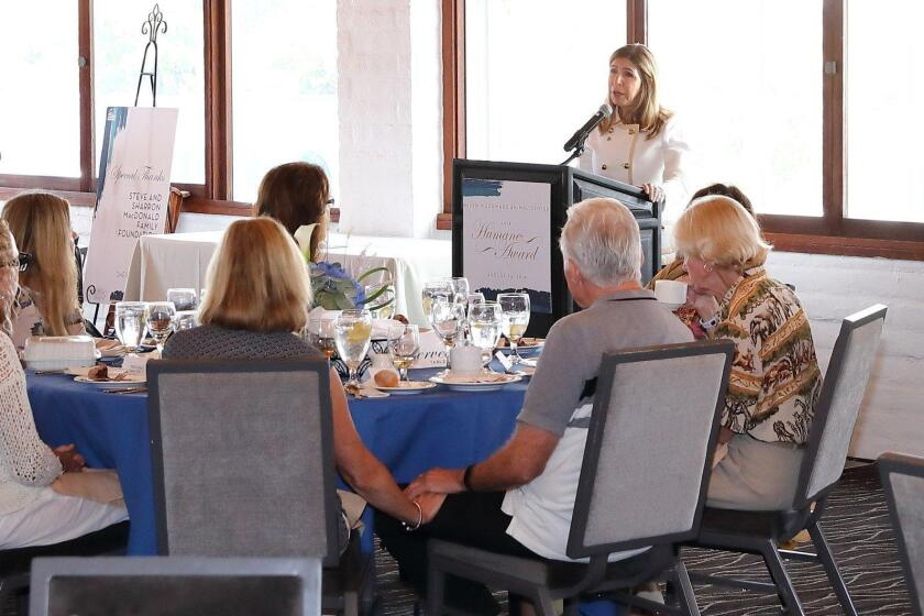 District Attorney Summer Stephan addresses guests at the 2019 Humane Award luncheon