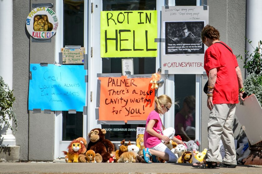 Protestors leave signs and stuffed animals in front of Dr. Walter Palmer's dental practice, Wednesday, July 29, 2015, in Bloomington, Minn. Palmer has been under fire since his involvement in the death of Cecil the Lion became public. (Glen Stubbe/Star Tribune via AP) MANDATORY CREDIT; ST. PAUL PIONEER PRESS OUT; MAGS OUT; TWIN CITIES LOCAL TELEVISION OUT
