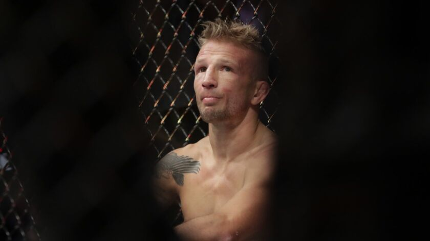 TJ Dillashaw, right, reacts after a flyweight mixed martial arts championship bout against Henry Cej