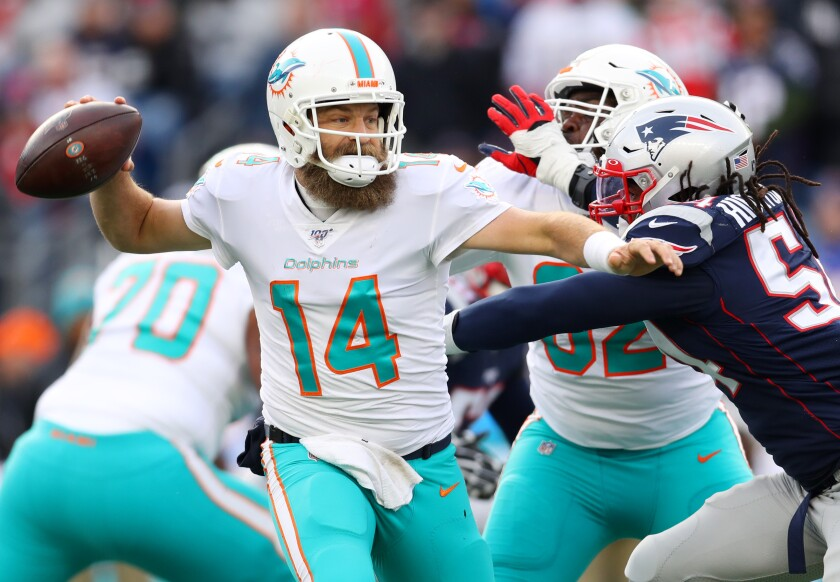 Miami Dolphins quarterback Ryan Fitzpatrick looks to pass against the New England Patriots.