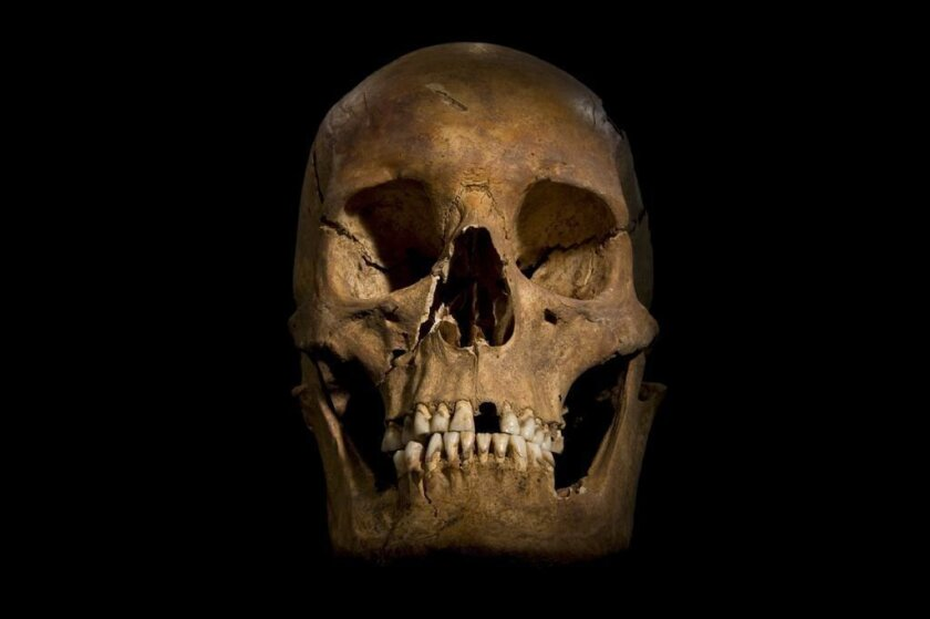 Range of clues, not just DNA, indicates bones are Richard III's