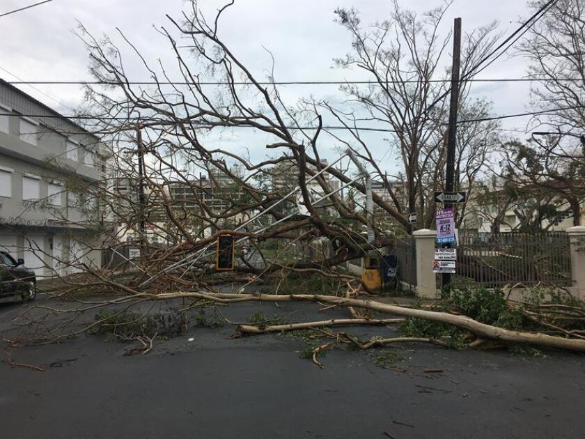 La alcaldesa de San Juan, Carmen Yulín Cruz, anunció hoy que las banderas de las instalaciones municipales en la capital puertorriqueña ondearán a media asta hasta nuevo aviso en señal de solidaridad con los ciudadanos que aún no tienen energía eléctrica y los fallecidos tras el huracán María. EFE/Archivo