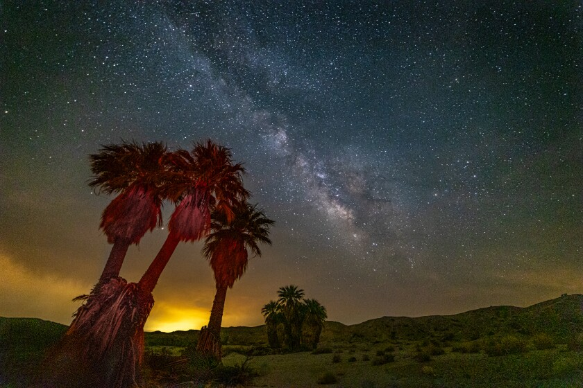 Nighttime at the oasis with the Milky Way overhead.
