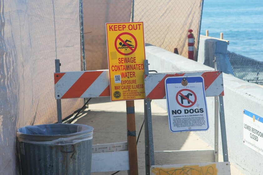 Signs warn visitors not to enter the contaminated water at Children's Pool beach Tuesday afternoon, Oct. 14.