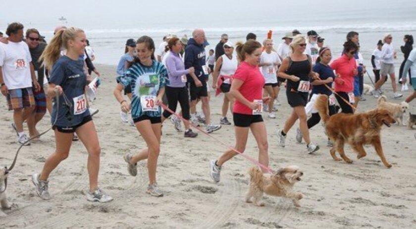 Runners take off at the annual Jake's Del Mar Beach Fun Run. (Photo: Jon Clark)
