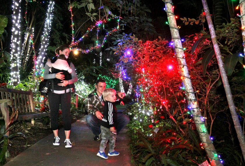 Joey and Kim Prast and their kids Jameson and Emerson walk through the tropical rain forest area at San Diego Botanic Garden's annual holiday Garden of Lights.