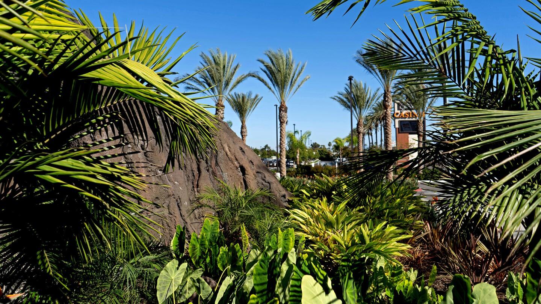 Photos Neighborhood Spotlight Hawaiian Gardens Los Angeles Times