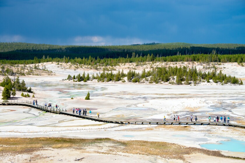 Visitors follow the boardwalk leading across Porcelain Basin, part of the Norris Geyser Basin, one o