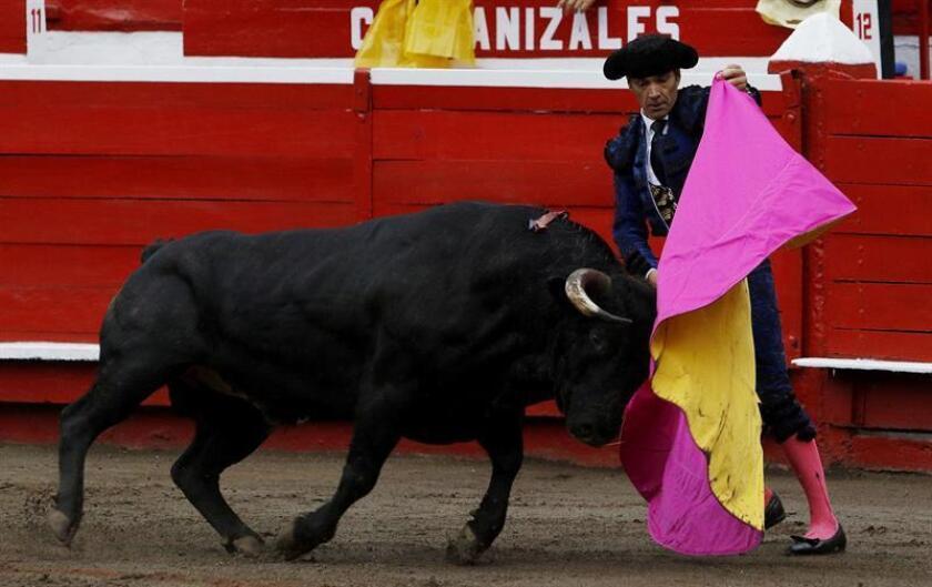 El torero español El Cid lindia un toro durante el segundo día de la Temporada Taurina de la Feria de Manizales hoy, lunes 7 de enero de 2019, en Manizales (Colombia). EFE