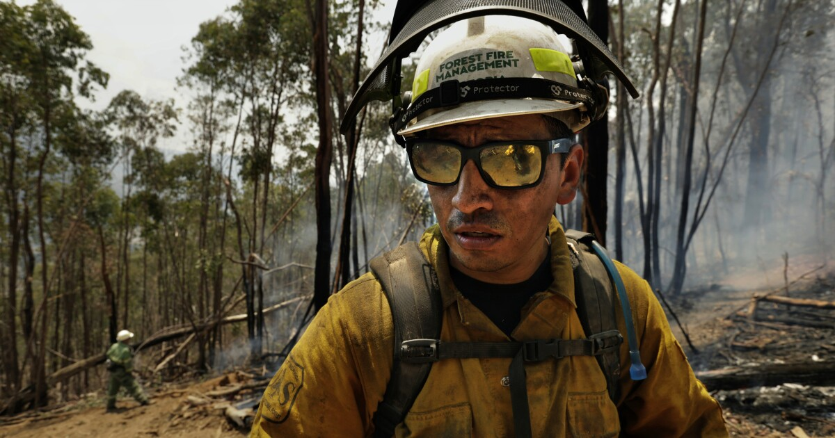 Stags, snakes and G'day mate: U.S. firefighters adapt and battle Australia's bush fires
