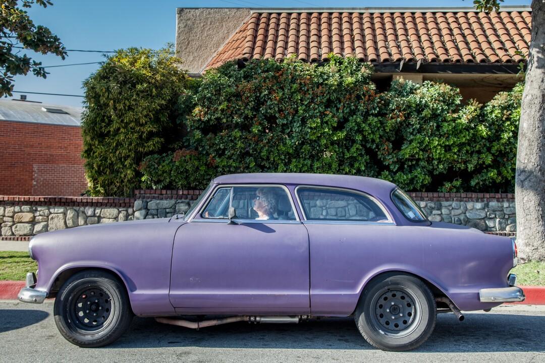 """April 01, 2020 — Purple Reign"" by Rafael Cardenas"