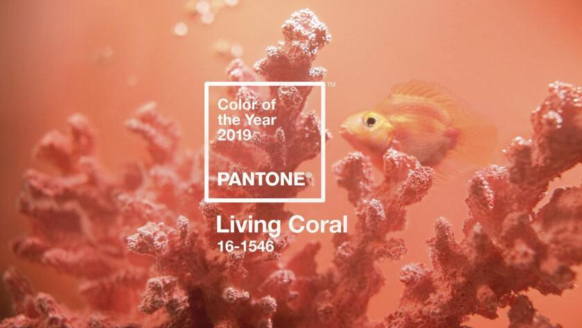 Living Coral is the Pantone Color Institute's 'Color of the Year' for 2019.