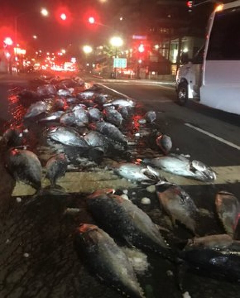 San Diego police tweeted out this photo after several dozen fish fell from the back of a truck onto West Grape Street north of downtown San Diego early Tuesday.