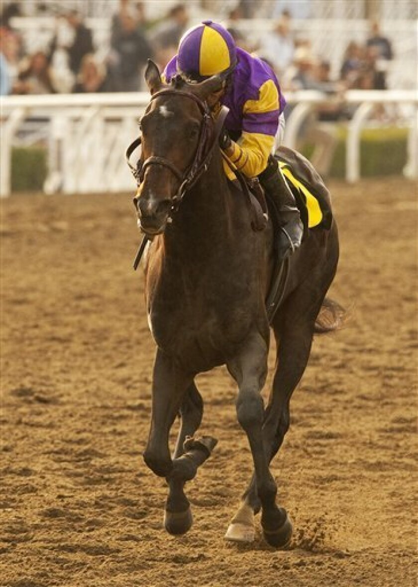 FILE - This March 12, 2011 image released by Benoit Photo shows Premier Pegasus, jockey Alonso Quinonez up, winning the Grade II, $250,000 San Felipe Stakes at Santa Anita Park, Arcadia, Calif.(AP Photo/Benoit Photo, File)