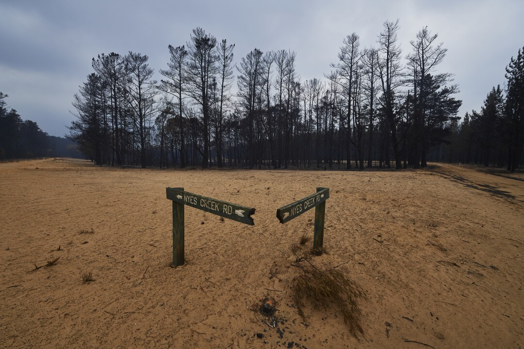 A burned sign in the Wingello State Forest in Wingello, Australia.