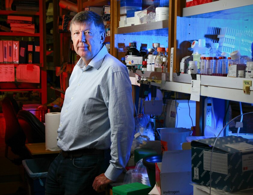 Dennis Burton at The Scripps Research Institute in La Jolla has been a pioneer in the search for broadly neutralizing antibodies against HIV. / photo by Howard Lipin * U-T