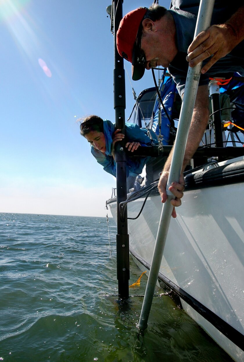 On San Diego Bay near Point Loma Scripps Institution of Oceanography of Professor Neal Driscoll uses a pole to clear kelp from the sonar device below the surface that's mounted on the end of the pole attached to the side of the boat. At left is Jillian Maloney.
