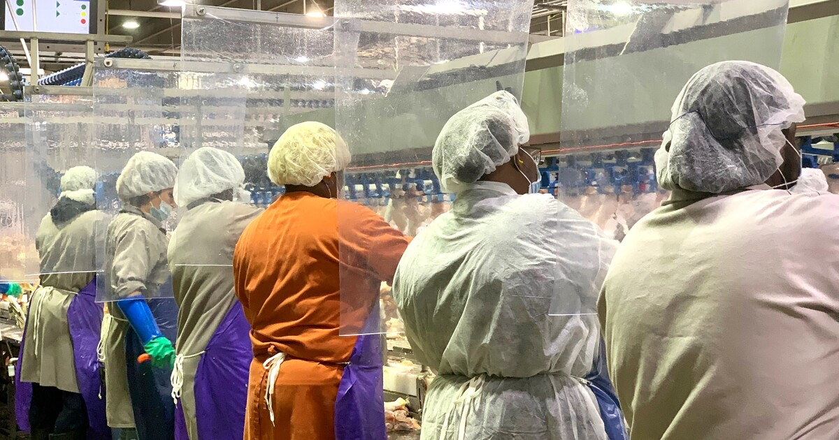 Meat processing plants have long mistreated their workers