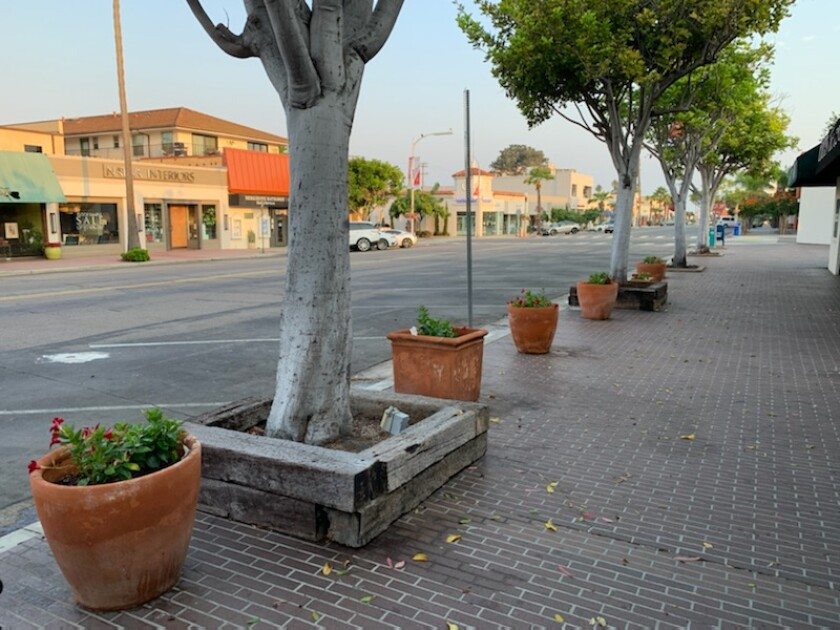 Flower pots on Girard Avenue got some sprucing up from Enhance La Jolla.