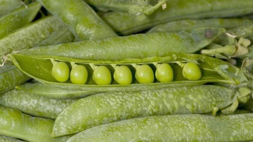 Vibrant green English peas, also known as common garden peas, can be enjoyed a variety of ways but will need to be shucked before using.