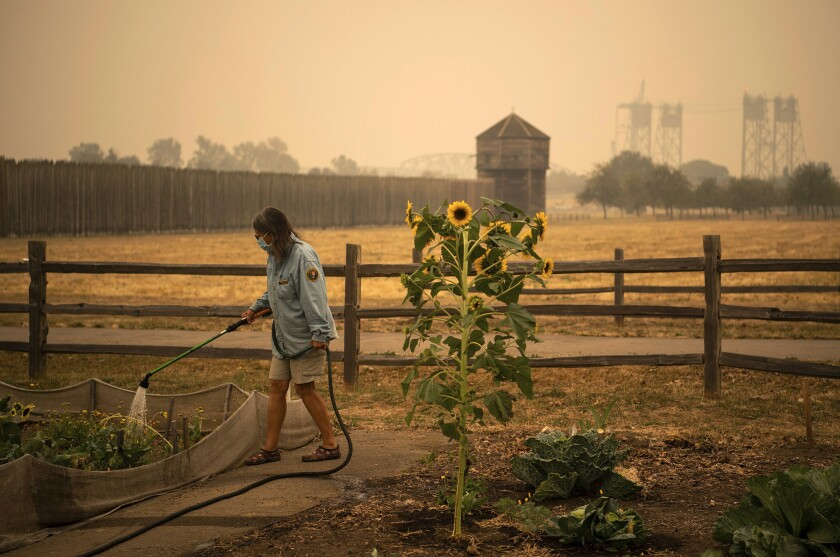 """Volunteer Elizabeth Stoltz of Heisson waters the Fort Vancouver Garden in Vancouver, Wash., Friday, Sept. 11, 2020. Stolz said things were extra dried out because of the wind and smoke. """"The wind sucks the life out of everything,"""" she said. Stoltz said she is still not under evacuation from the Big Hollow Fire but her family made a plan in case it gets to that point. Clark County entered hazardous air-quality territory late Thursday as wildfire smoke traveling from other areas enveloped Southwest Washington. (Alisha Jucevic/The Columbian via AP)"""