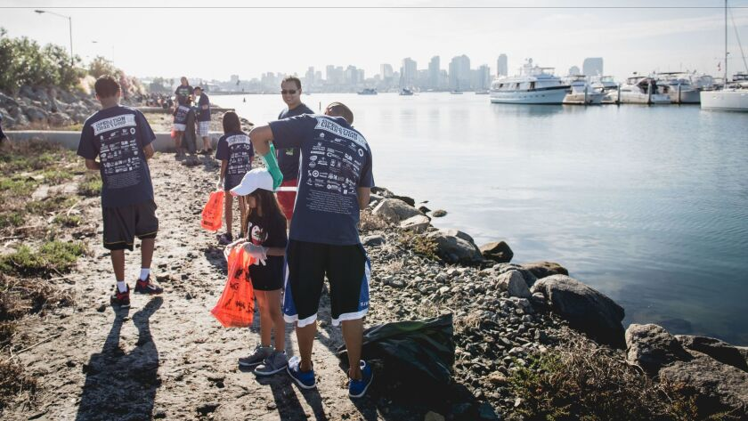 The 2014 Operation Cleanup is part of the port's effort to improve the bay.