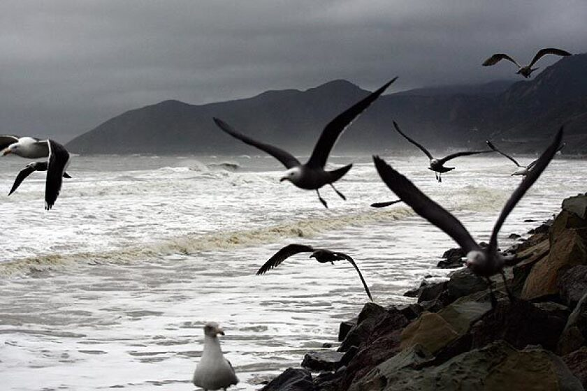 Parking lots reopened at Emma Wood State Beach, just west of Ventura, and other California state parks and beaches.