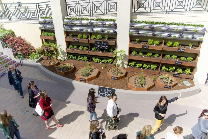Feeding San Diego Garden