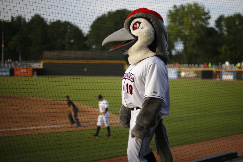 Bunker, the mascot of the Fayetteville Woodpeckers.