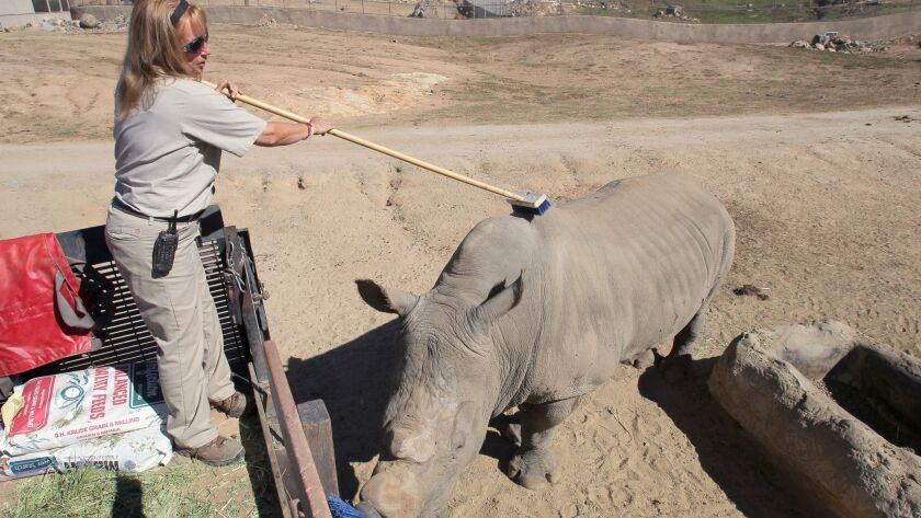 September 30, 2015_Escondido, California_USA_| At San Diego Zoo Safari Park Lead Animal Keeper Jane