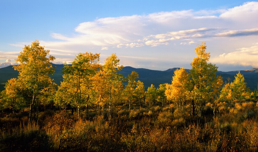 1A look at the autumn views of the Rocky Mountains.