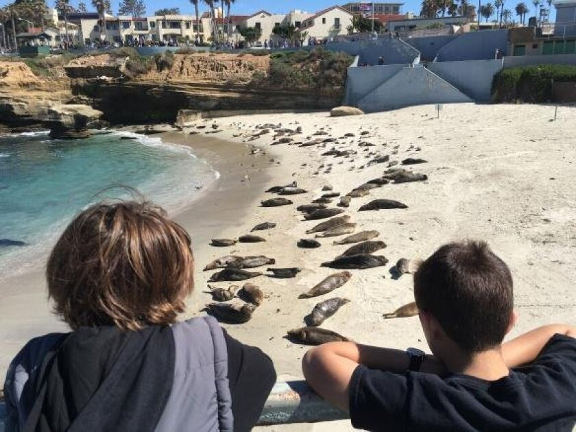 Brothers and Josiah, 11 and Joshua, 9, view Casa Beach (aka Children's Pool) from the elevated observation walkway.