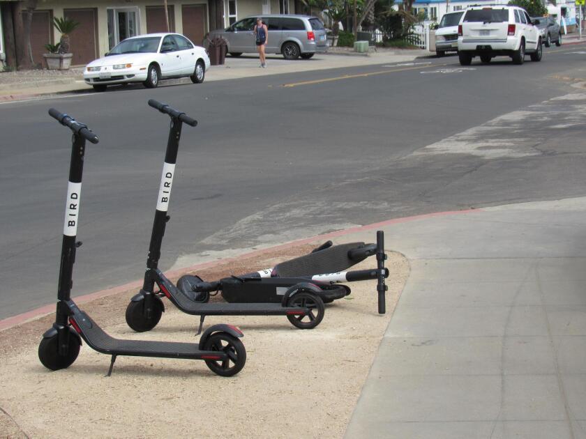 bird-scooters-20190214