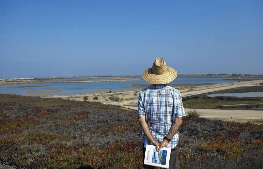 Darrel Airhart looks out over the Bolsa Chica wetlands during the Aug. 24 commemoration of the 10th anniversary of opening a tidal inlet that allowed ocean water to flow into the wetlands for the first time since 1899.