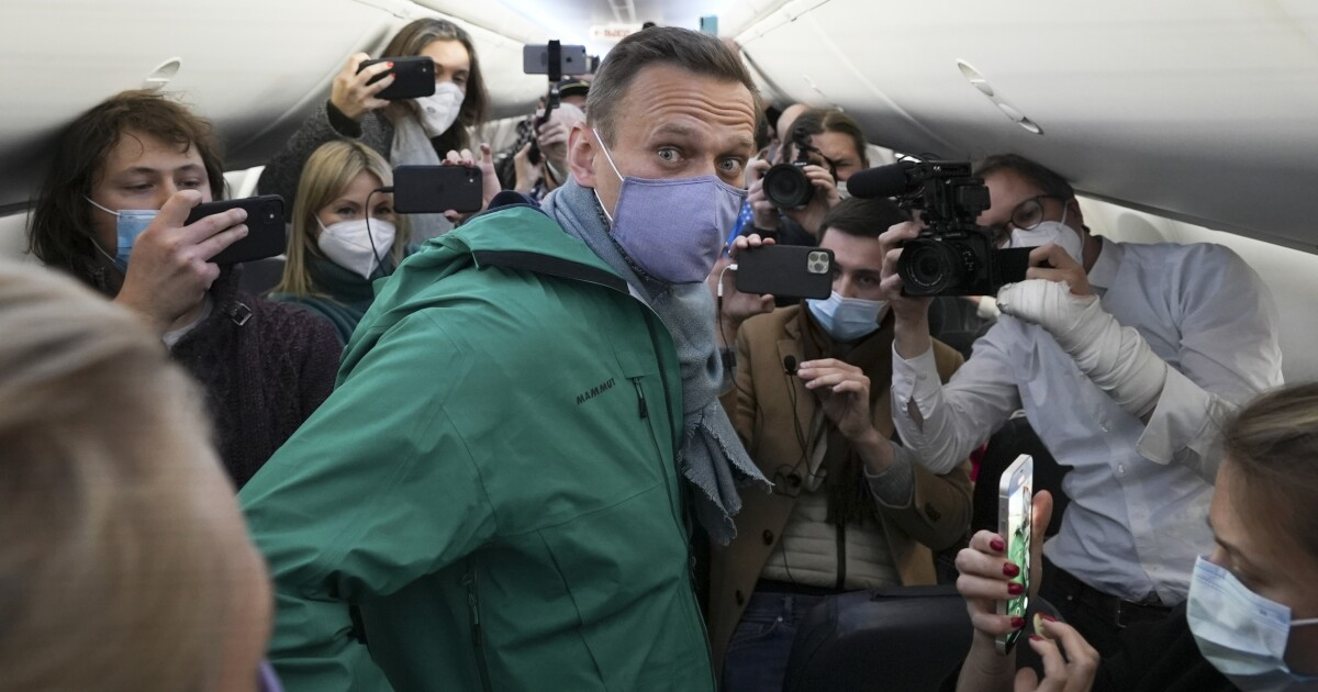Why Vladimir Putin can't keep Alexei Navalny down