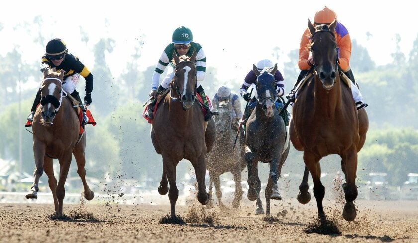 Stellar Wind (middle) will be the second choice behind Beholder in Saturday's Clement L. Hirsch Stakes at Del Mar.