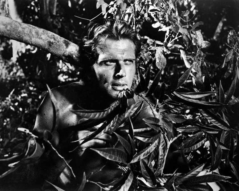 Ron Ely as Tarzan
