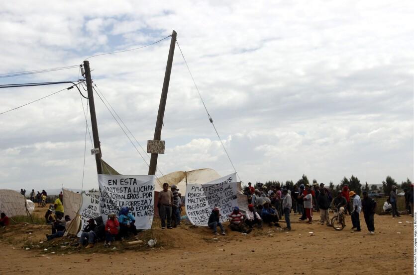 A 10 días del paro laboral de los jornaleros de San Quintín, los líderes jornaleros y los empresarios no pudieron llegar a un acuerdo sobre un incremento salarial.