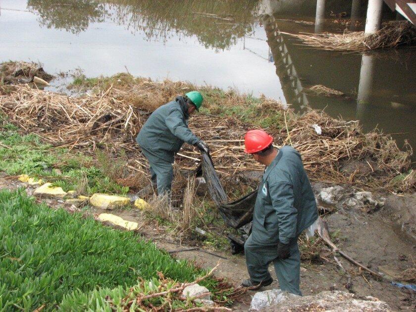 Volunteers clean a segment of Chollas Creek.