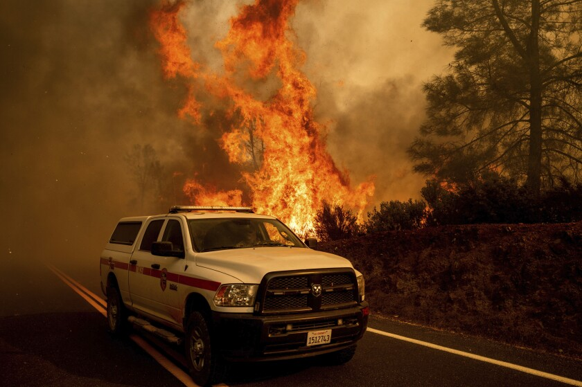 Flames from the LNU Lightning Complex fires leap above Butts Canyon Road on Sunday, Aug. 23, 2020, in unincorporated Lake County, Calif. (AP Photo/Noah Berger)