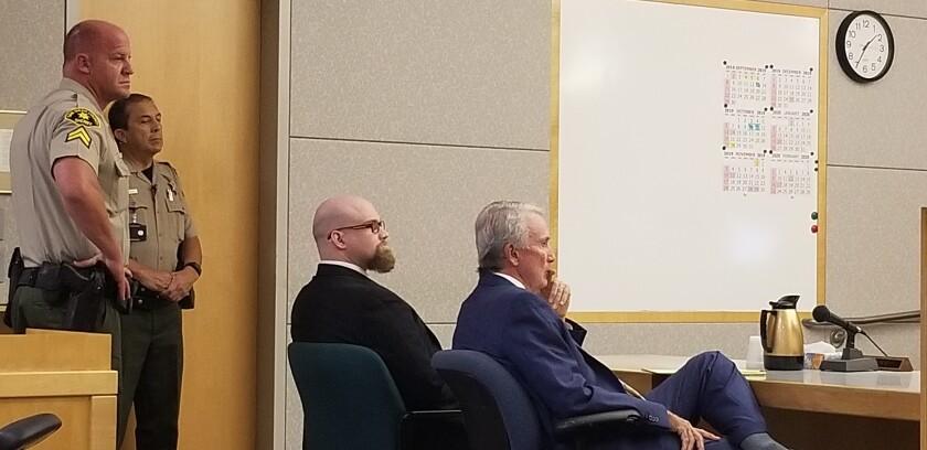 Mikhail Schmidt in court