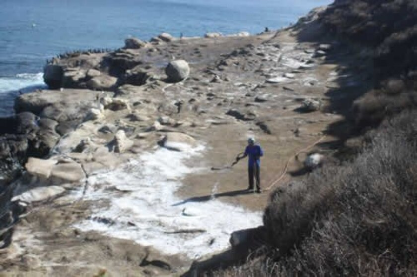 A Blue Eagle worker sprays a layer of cleaning agent on the bluffs in front of Brockton Villa restaurant last week at the Cove. Ashley Mackin
