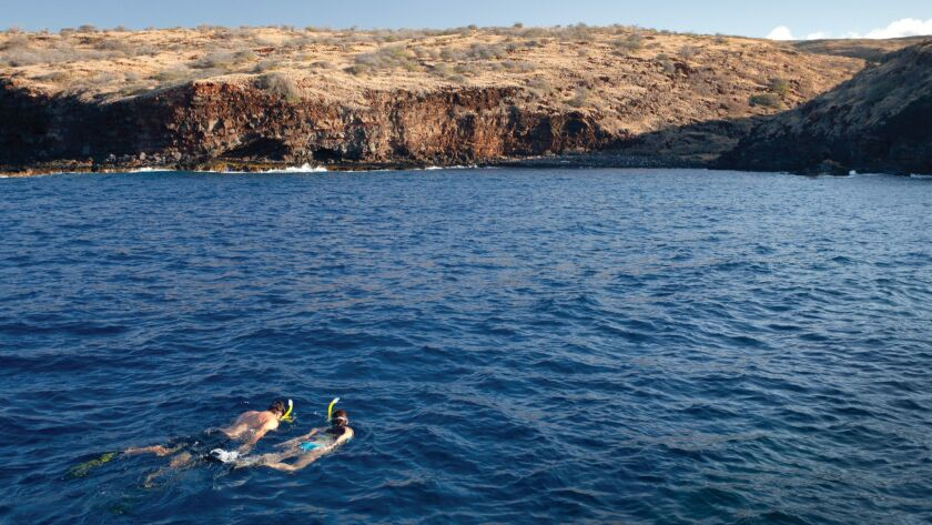 Snorkeling in Hulopo'e Bay is a popular activity for guests of the Lanai resort.