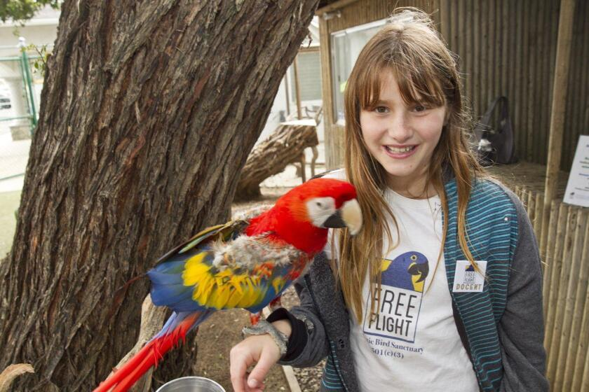 Shelby Sparks with Mono the Scarlet Macaw