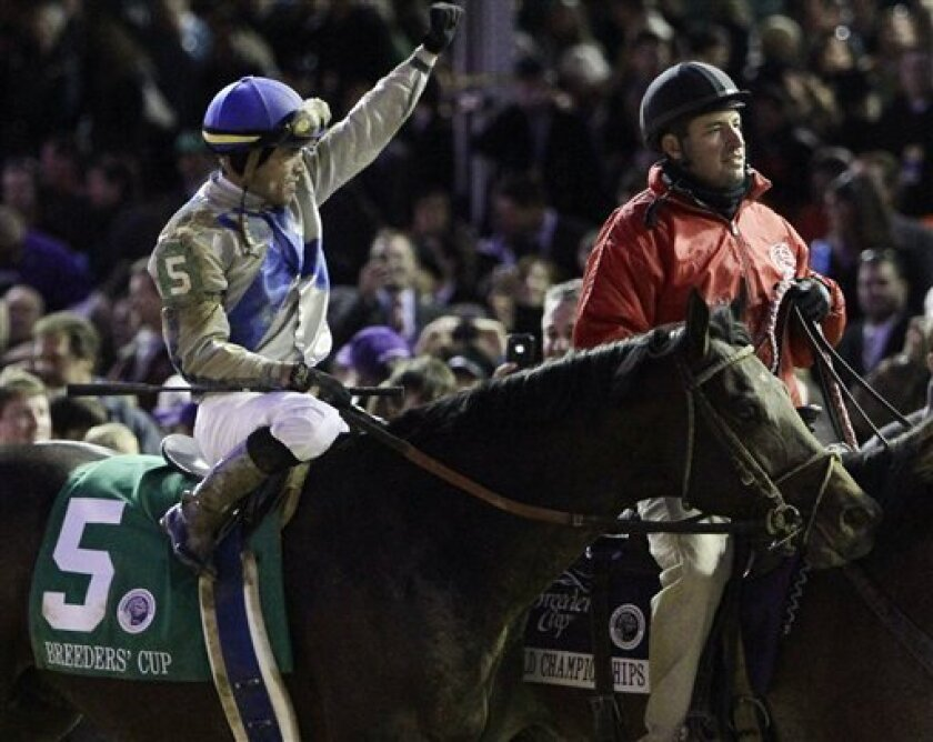 Garrett Gomez reacts after riding Blame to victory during the Classic race at the Breeder's Cup horse races at Churchill Downs Saturday, Nov. 6, 2010, in Louisville, Ky. (AP Photo/Garry Jones)