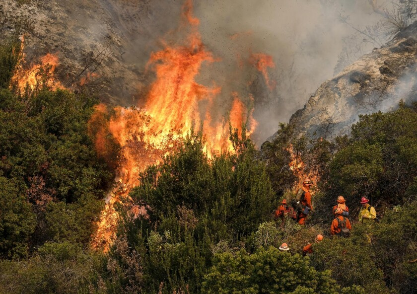 California Wildfires-Land Projects